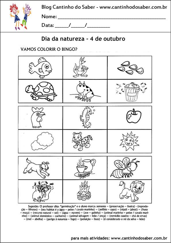 atividades para o dia da natureza bingo dos animais