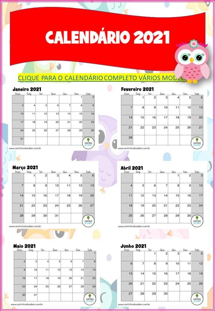 planner 2021 da corujinha completo calendário de 2021