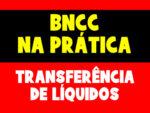 Corpo, gestos e movimento – Campos de experiência da BNCC