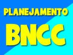 Plano de aula anual de acordo com a BNCC para Maternal, Educação Infantil e Ensino Fundamental